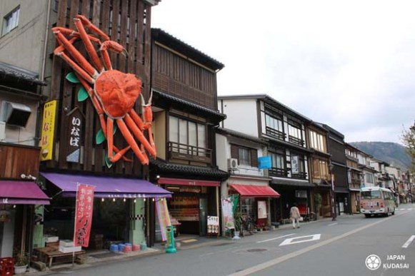 Crabe des neiges, crabe matsuba, spécialité culinaire de kinosaki onsen, à déguster l'hiver de novembre à mars.