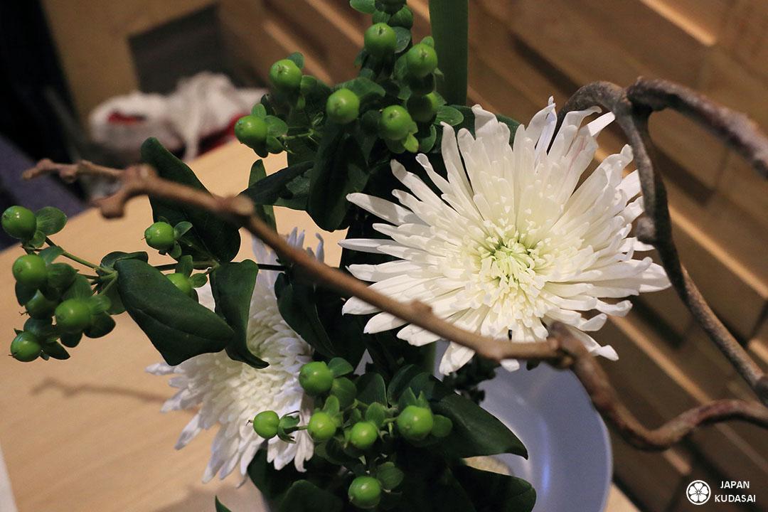 zoom chrysanthème