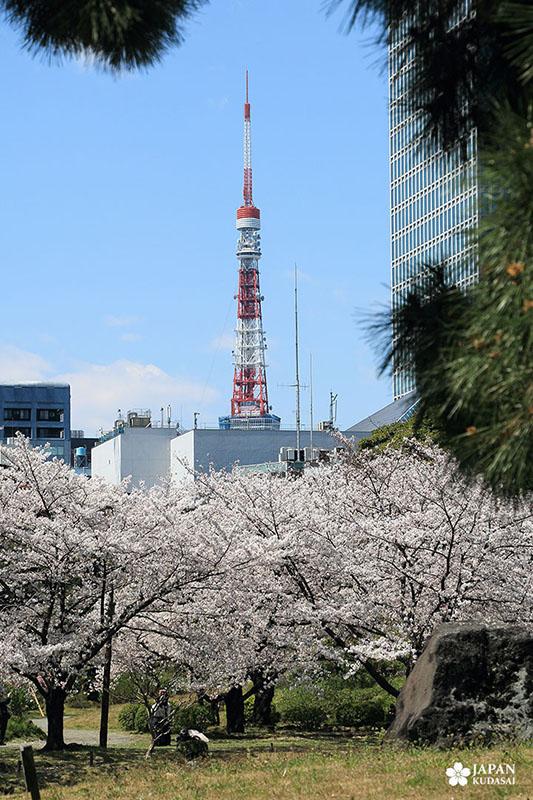 Jardin Kyu-Shiba-rykyu garden de Tokyo (10)