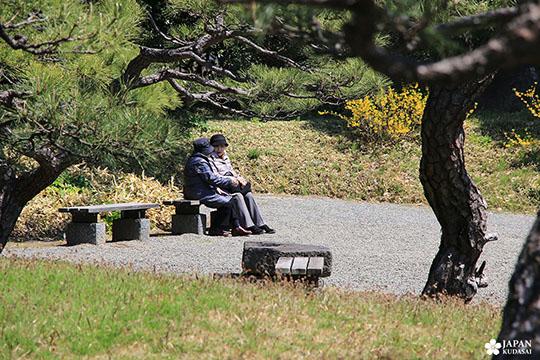 Jardin Kyu-Shiba-rykyu garden de Tokyo (4)