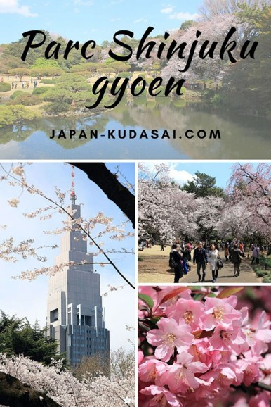 Visiter le parc Shinjuku gyoen au printemps - un incontournable au printemps