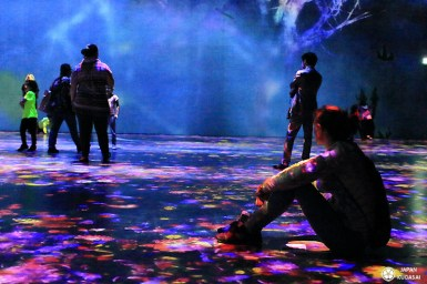 expo-teamlab-paris (13)