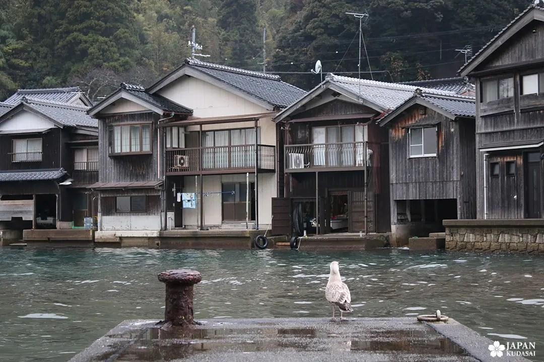 mouette quai port ine kyoto