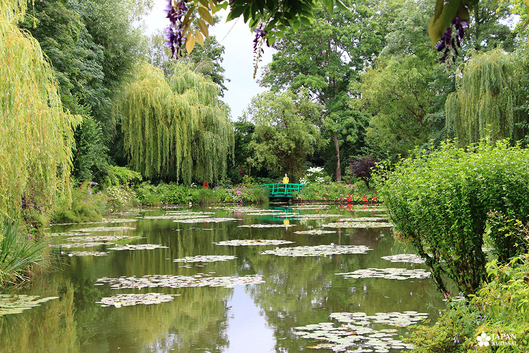 bassin nymphéa jardin de claude monet giverny eure