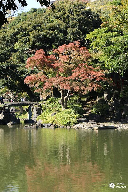koishikawa-korakuen (6)