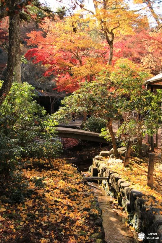 mont-misen-miyajima (2)