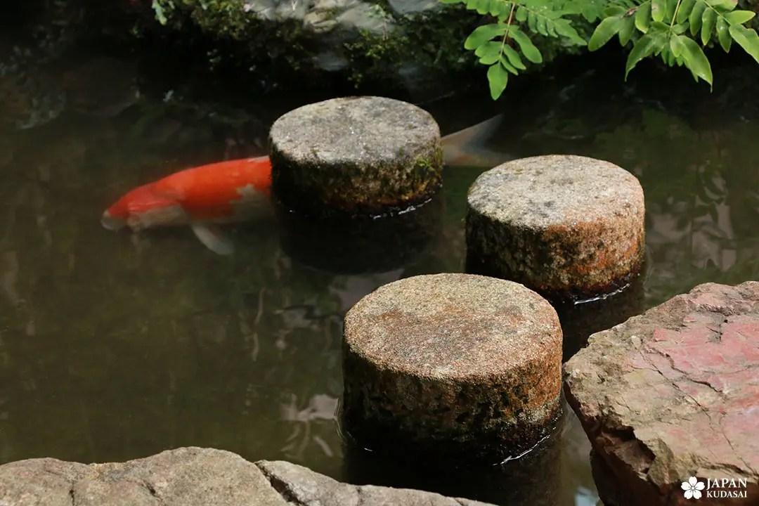 pas japonais en pierre bassin carpes koi