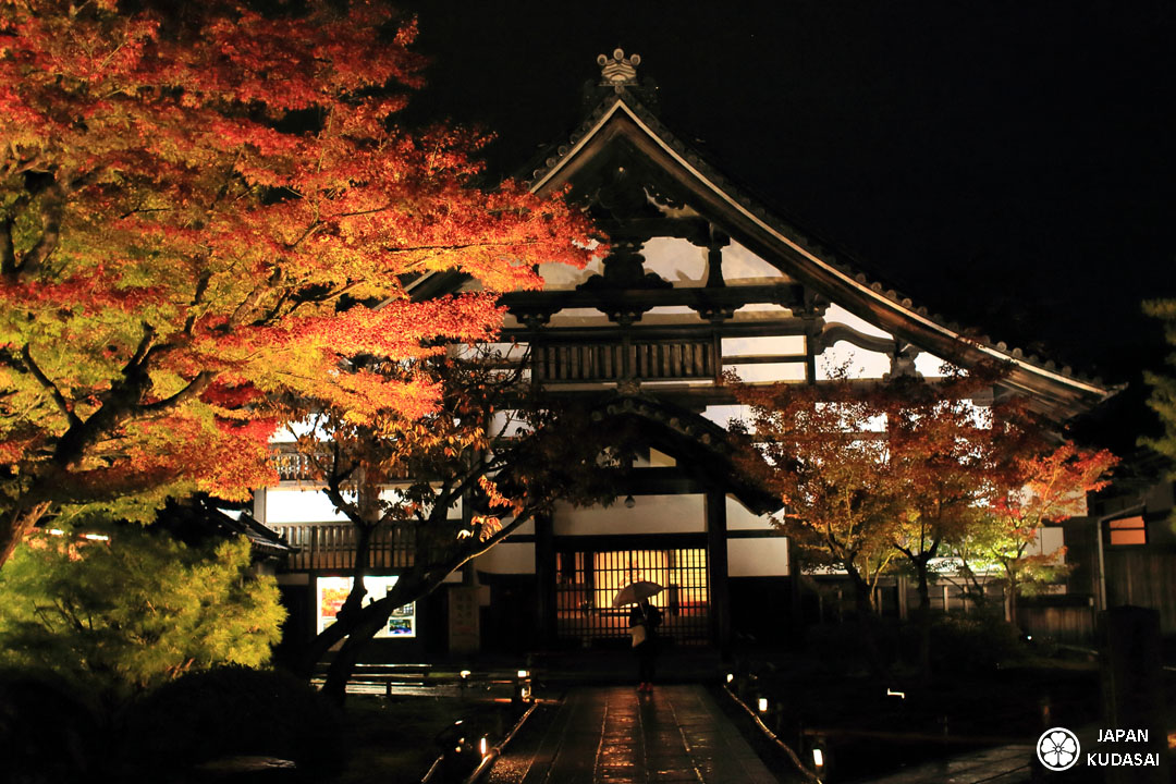 Light up autumn leaves in Kyoto at Kodaiji temple - automne au Japon