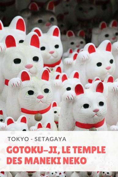 totoro-tokyo-02