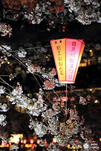 lanterne de matsuri du printemps