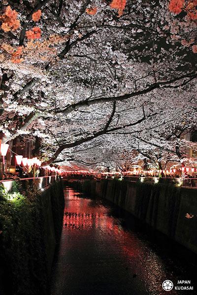 La rivière Meguro - Tokyo