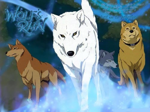 Wolfs-Rain-Wallpaper