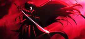 Akame ga kill : un anime tranchant !