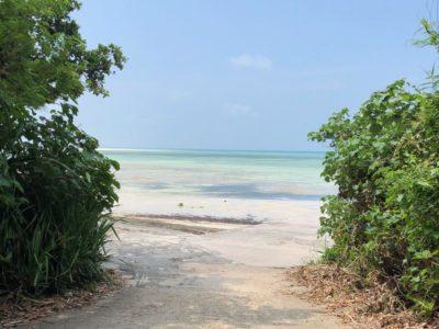 Taketomi Island | Okinawa Travel Guide