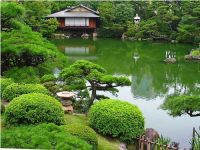 Pond and hill garden | Japanese garden
