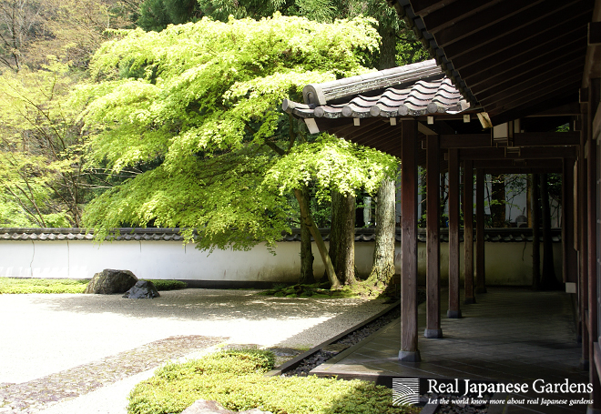 About Us Real Japanese Gardens
