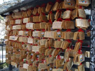 meiji-shrine-japan