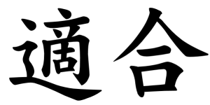 Japanese Word for Adaptation