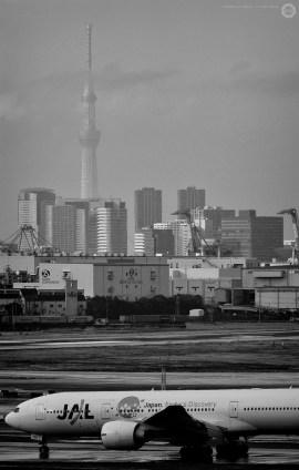 haneda_ALF8572-nr_a