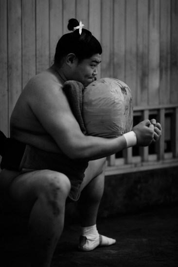 ALF_8491_sumo-small