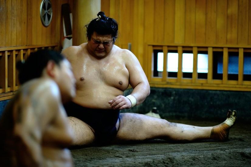 ALF_8753_sumo-small