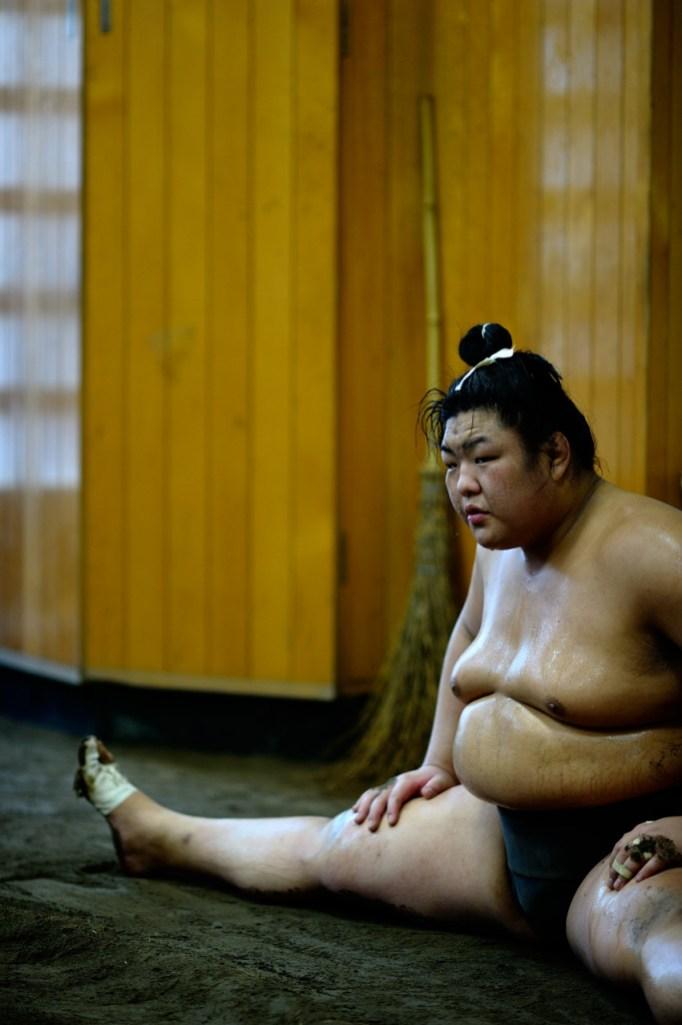ALF_8755_sumo-small