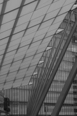 AG-architecture-walk_ALF_2773