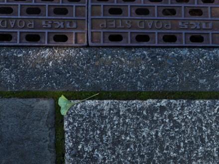 AG-Hasselblad-tokoyo-photowalks_9339641