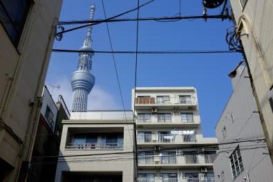 tokyo-photowalks-nethertokyo__DSF3868