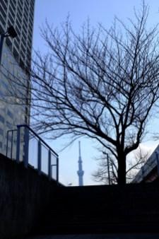 tokyo-photowalks-nethertokyo__DSF3972