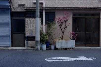 tokyo-photowalks-nethertokyo__DSF3990