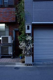 tokyo-photowalks-nethertokyo__DSF4005