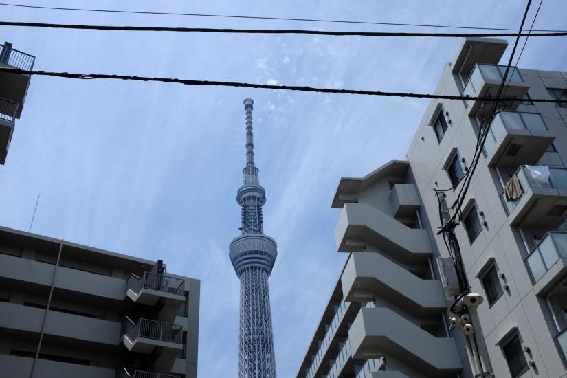 AG-off-piste-tokyo-0002__DSF8188