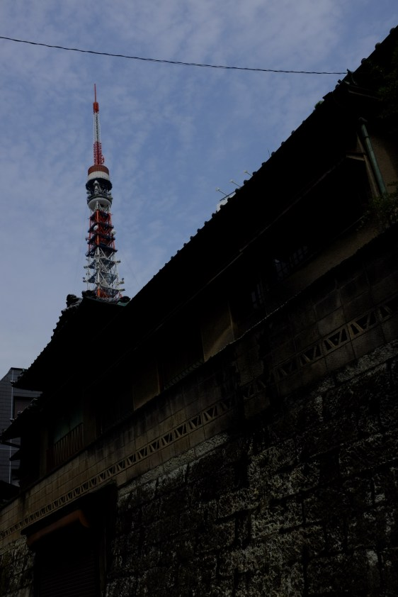 _DSF8259_tokyo-tower-small