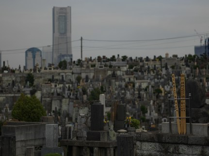 AG-tunnel-cemetery-walk-0000045
