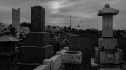 AG-tunnel-cemetery-walk-2221