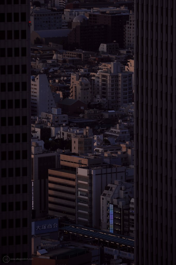 A few recent shots from the Tokyo Metropolitan Government Building