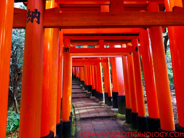 Japan market entry: why is it difficult? how to succeed