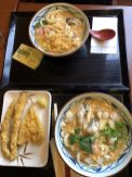 Marugame udon with oysters, scallops. Goubou and white fish in tempura