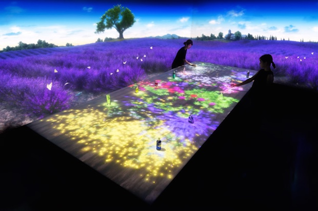 loccitane shinjuku teamlab digital immersion provence installation