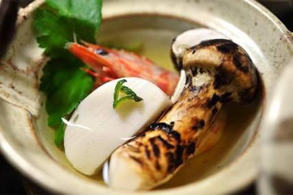 O Cogumelo Mais Caro Do Mundo | Curiosidades do Japão