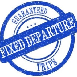 fixed-depature-trips