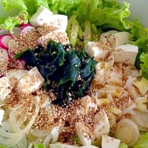 Comment utiliser le wakame et vinaigrette japonaise  ワカメの使い方