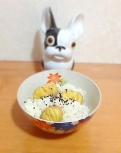 Kurigohan : riz à la chataîgne