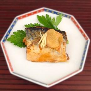 Maquereau au miso 鯖の味噌煮