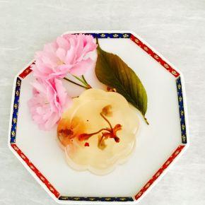 Gelée à la fleur de cerisier 桜のゼリー