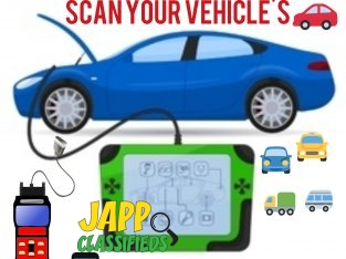 Car diagnostic test services