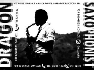 Saxophonist for hire?