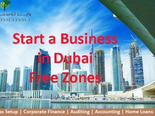 Affordable Company Formation in Dubai (UAE)