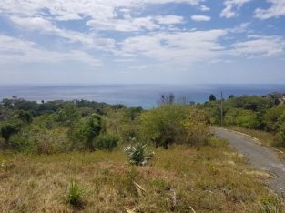 Limited Discount 3/4 Acre Sea View, Westmoreland